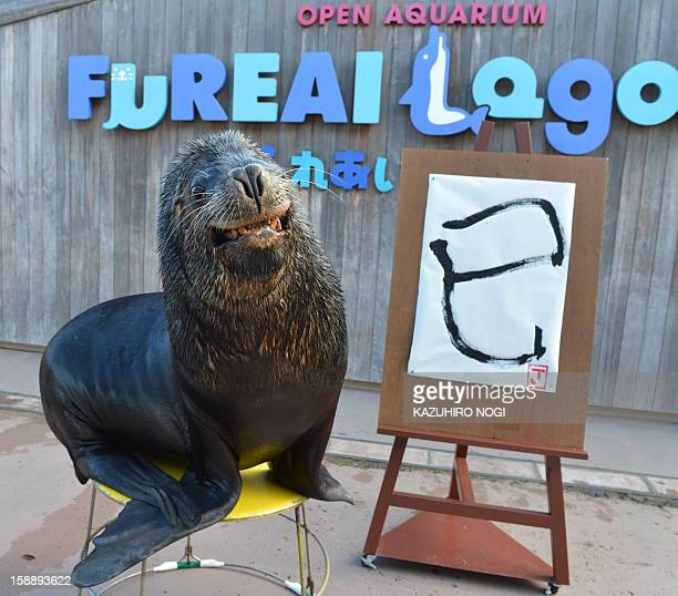 Sea lion 'Jay' poses with his 'calligraphy' of a Chinese character reading 'the Serpent' at the Hakkeijima Sea Paradise aquarium in Yokohama suburban...