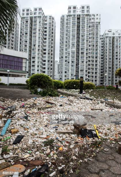 A sea of polystyrene is pictured in Heng Fa Chuen in Hong Kong on August 24 a day after Typhoon Hato created a sea surge which flooded the area...