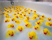 Sea of toy ducks
