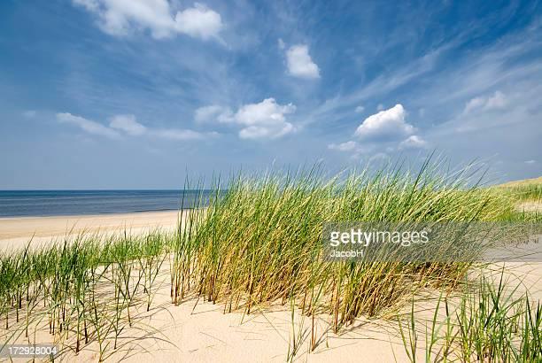 Mare, dune di sabbia e