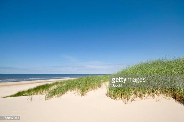 Sea, Sand and Dunes