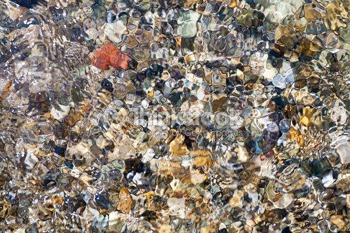Gravilla de conchas marinas, corales, piedras para el fondo : Foto de stock
