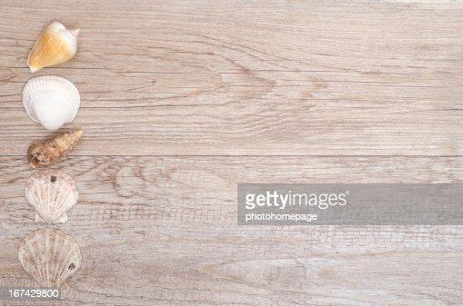 Conchas do mar em uma mesa de madeira com espaço de texto : Foto de stock