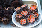 Cut sea urchins laid on a dish for sale in the public fish market of Catania, Sicily