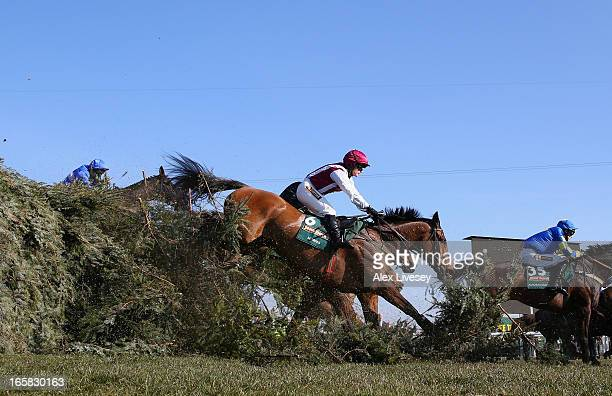 Seabass ridden by Katie Walsh jumps The Chair during the John Smiths Grand National at Aintree Racecourse on April 6 2013 in Liverpool England