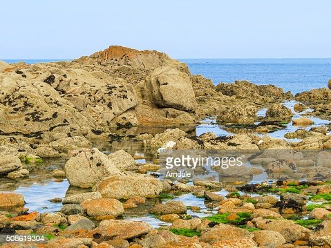 Seacoast and view of the gulf : Stock Photo