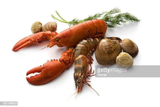 Seafood: Lobster, Prawn, Clams and Dill