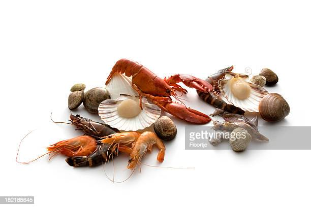 Seafood: Lobster, Prawn, Shrimp and Shellfish
