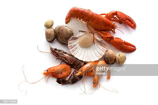 Seafood: Lobster, Shrimp, Prawn annd Shellfish