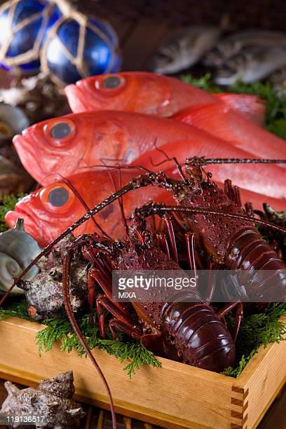 Seafood of Izu region