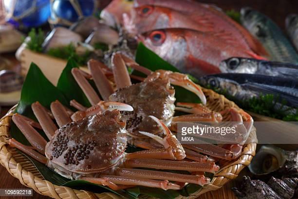 Seafood of San'in region