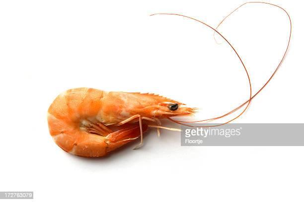 Restaurant de fruits de mer: Crevettes