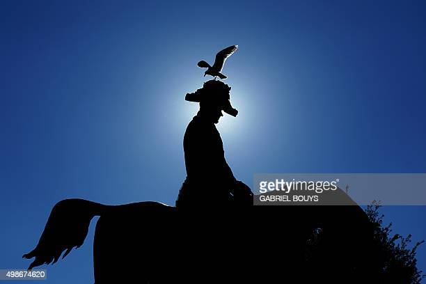 A seagul lands on a statue of King Carlo Alberto on November 25 2015 at the Quirinale garden in Rome AFP PHOTO / GABRIEL BOUYS / AFP / GABRIEL BOUYS