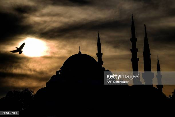 TOPSHOT A seagull flies over Eminonu district on October 23 as the Suleymaniye mosque is seen in the background / AFP PHOTO / OZAN KOSE