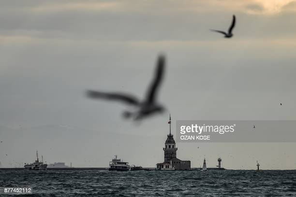 TOPSHOT Seagull fly over the bosphorus near the maiden tower on November 22 2017 in Istanbul / AFP PHOTO / OZAN KOSE
