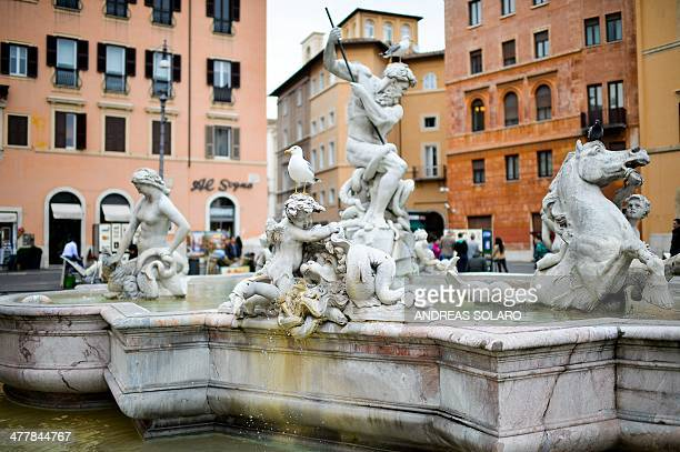 A seagull stands on a statue of the Bernini's fountain at the Piazza Navona in downtown Rome on March 11 2014 AFP PHOTO / ANDREAS SOLARO