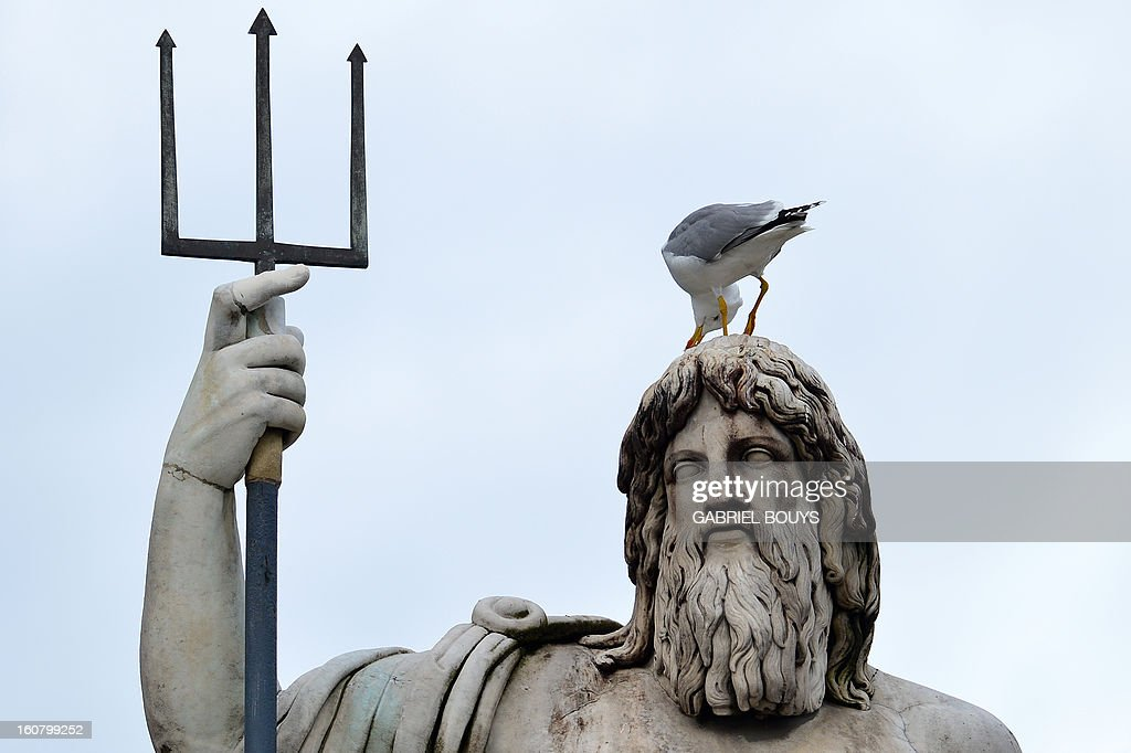 A seagull stands on the head of Neptune, part of the Fontana del Nettuno (Fountain of Neptune) on Piazza del Popolo (People's Square), in central Rome on February 6, 2013. The fountain was constructed in the 1822-23 by Giovanni Ceccarini.