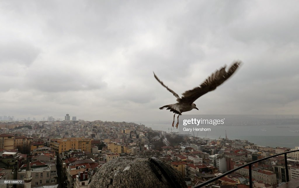A seagull takes off from the Galata Tower above the Bosphorus on March 13, 2017 in Istanbul, Turkey.