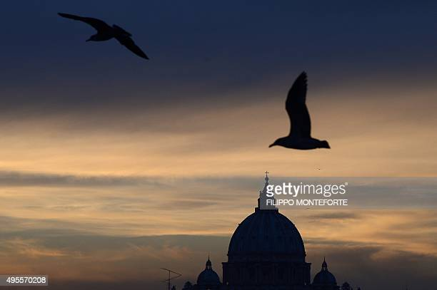 Seagulls are seen in the sky near the dome of St Peter's basilica at sunset on November 3 2015 in Rome AFP PHOTO / FILIPPO MONTEFORTE