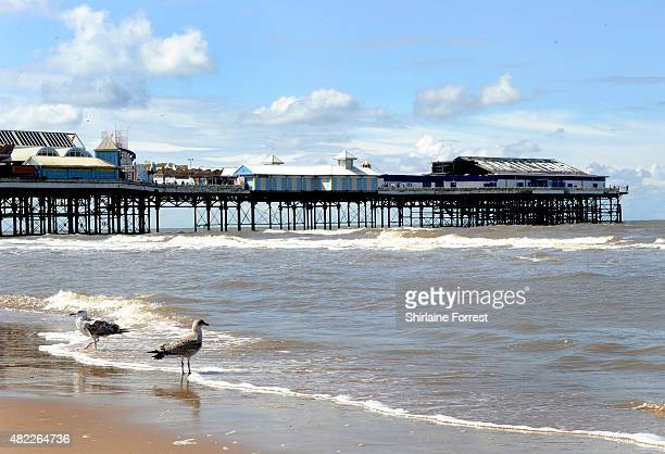 Seagulls enjoy the sunshine at the beach on July 29 2015 in Blackpool England