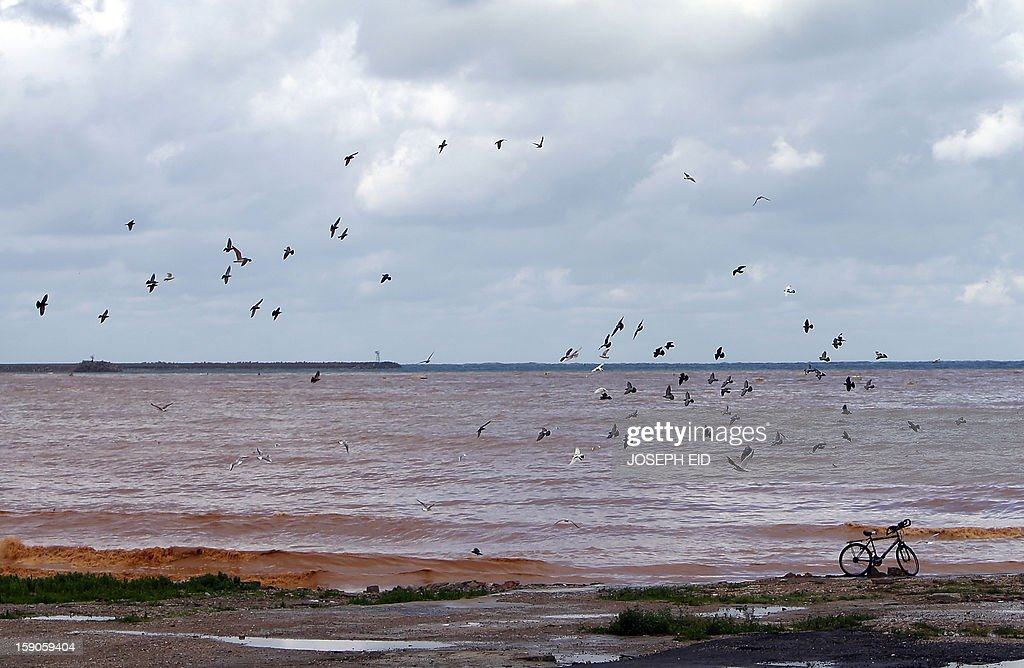 Seagulls fly over muddy water along the seafront close to the Lebanese capital Beirut on January 7, 2013, as the country experienced heavy rains and high wind overnight.