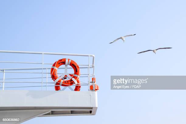 Seagulls flying next to the ship
