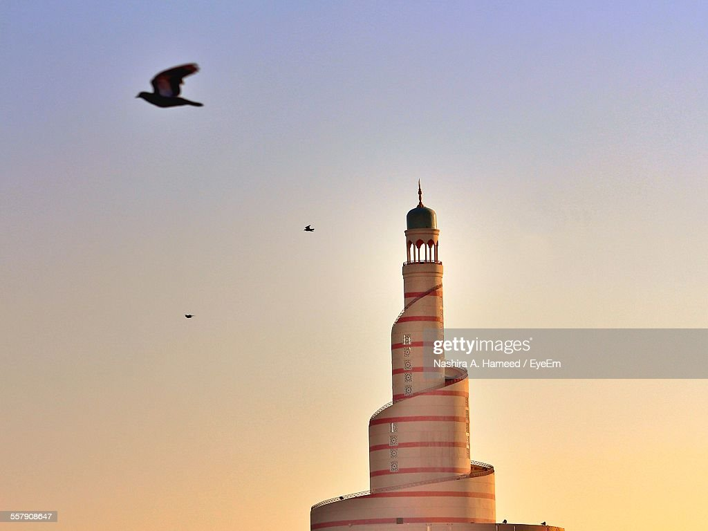 Seagulls Flying Over Mosque