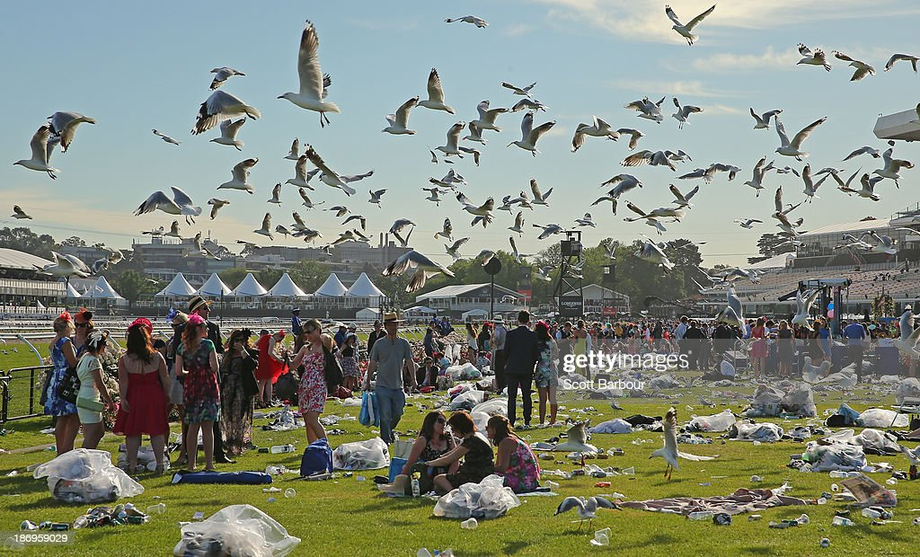 Seagulls hover overhead as racegoers make their way home through the rubbish left behind after attending Melbourne Cup Day at Flemington Racecourse on November 5, 2013 in Melbourne, Australia.