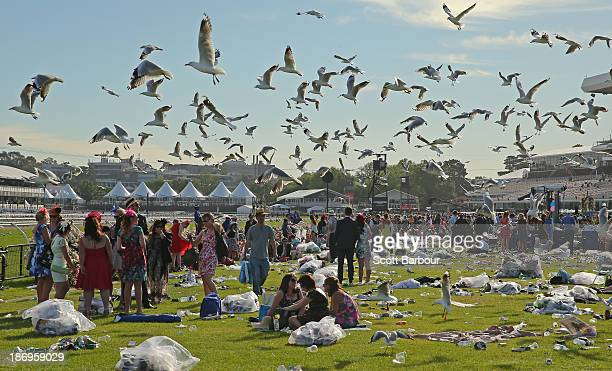 Seagulls hover overhead as racegoers make their way home through the rubbish left behind after attending Melbourne Cup Day at Flemington Racecourse...