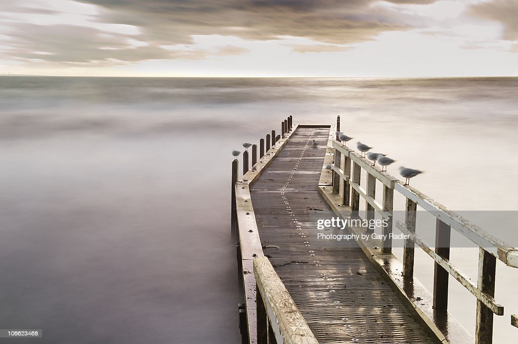 Seagulls on Frankston Boat Ramp Jetty, Australia : Stock Photo