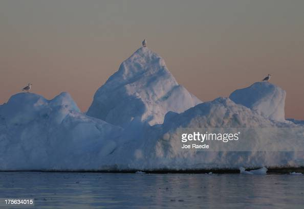 Seagulls sit on an iceberg on July 22 2013 in Ilulissat Greenland As Greenlanders adapt to the changing climate and go on with their lives...
