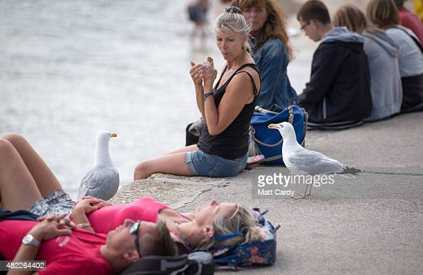Seagulls watch as a woman eats a icecream besides the harbour at St Ives on July 29 2015 in Cornwall England Recent attacks by herring gulls on...