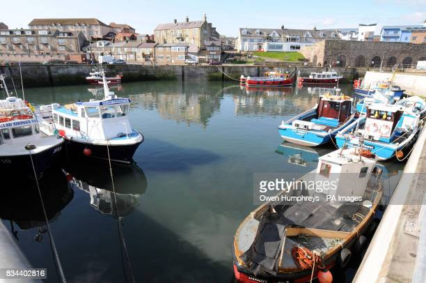 Seahouses Harbour in Northumbria