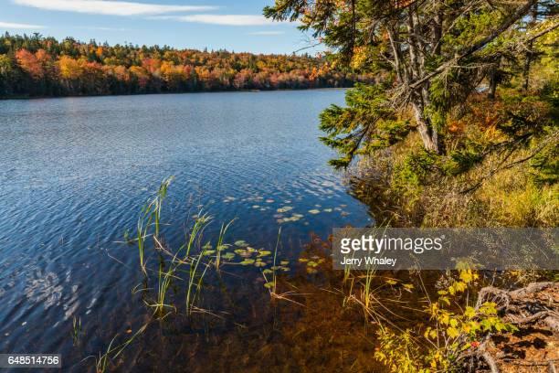 Seal Harbor Area, Mount Desert Island, Maine