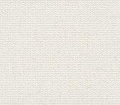 Seamless white canvas