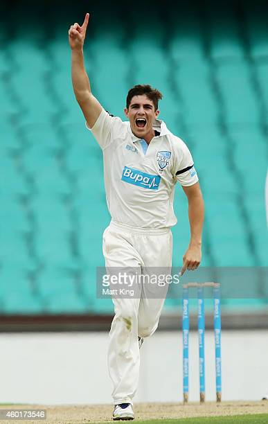 Sean Abbott of the Blues celebrates taking the wicket of Ben Cutting of the Bulls during day one of the Sheffield Shield match between New South...