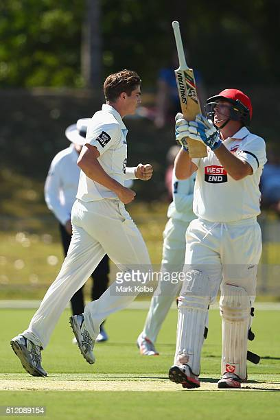 Sean Abbott of the Blues celebrates taking the wicket of Mark Cosgrove of the Redbacks during day one of the Sheffield Shield match between New South...