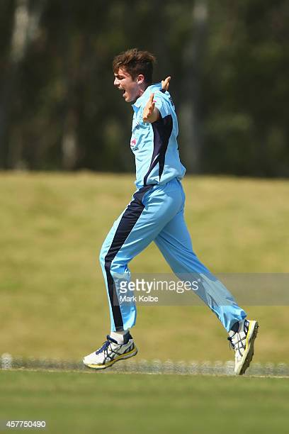 Sean Abbott of the Blues celebrates taking the wicket of Nathan Reardon of the Bulls during the Matador BBQs One Day Cup Elimination Final match...