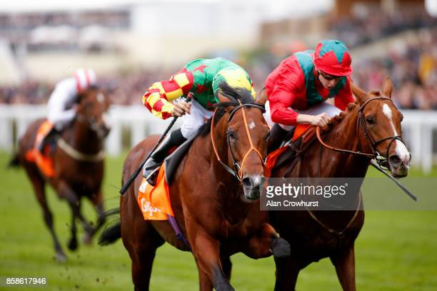 Sean Levey riding Danehill Kodiac win The Gigaset Cumberland Lodge Stakes from Waldgeist at Ascot racecourse on October 7 2017 in Ascot United Kingdom