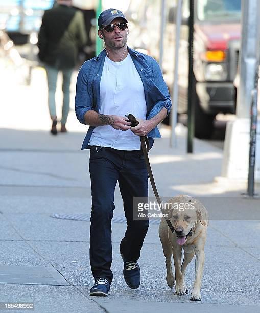 Seann William Scott is seen in Soho on October 21 2013 in New York City