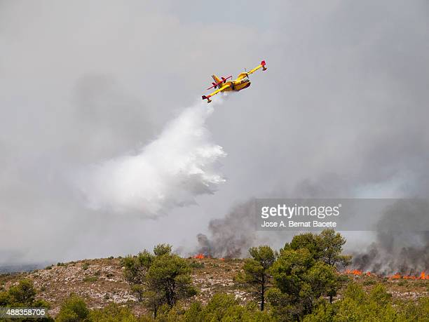 Seaplane discharging water on a forest fire