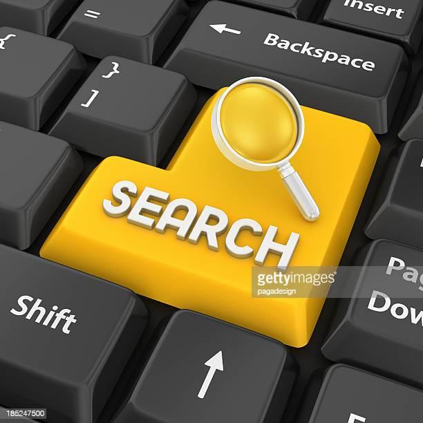 Inserire la chiave di ricerca