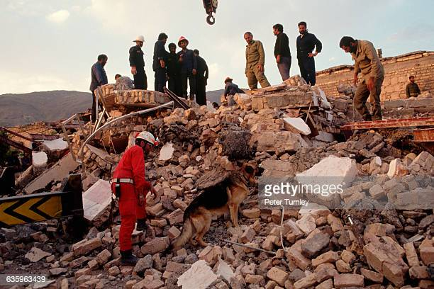 Search For Survivors After an Earthquake in Iran