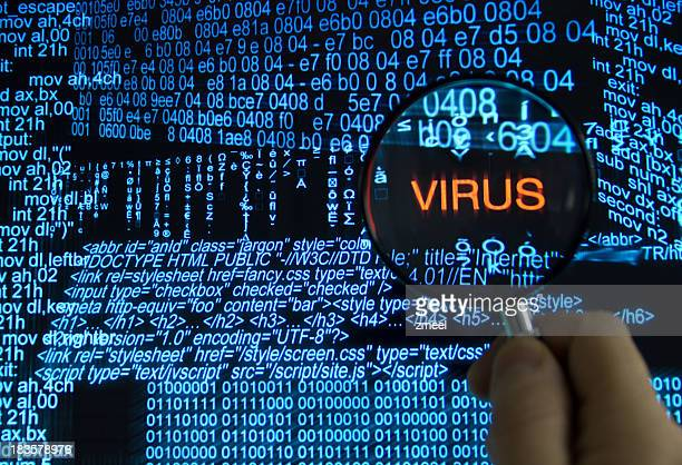 Searching for computer virus