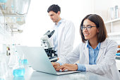 Lab worker sitting in front of laptop and searching for data for new experiment