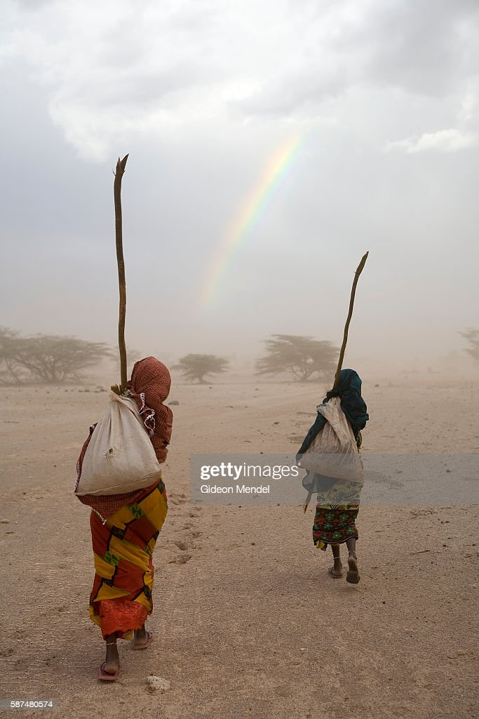 Searching for forage for their remaining few goats after a terrible threeyear long drought two Gabbra women Ilo Jarso and Gonche Salesa make their...
