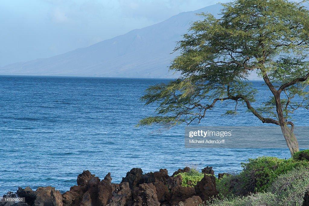 Seascape at Wailea, Maui : Stock Photo