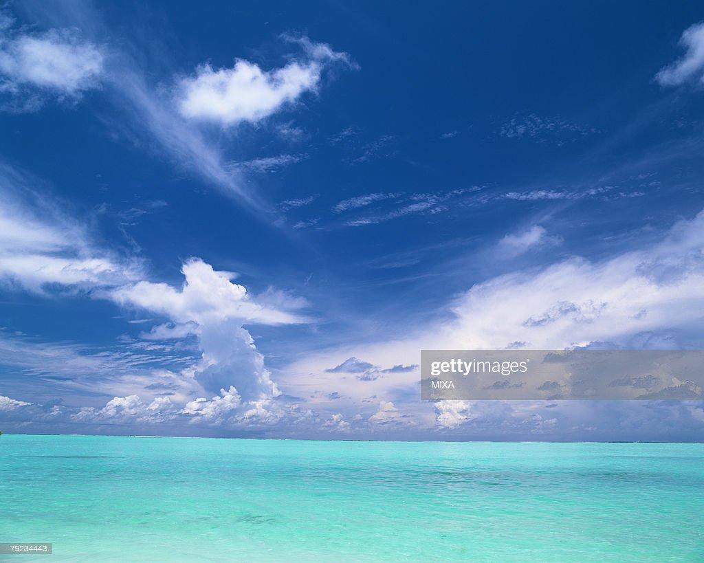 Seascape in Maldives : Stock Photo