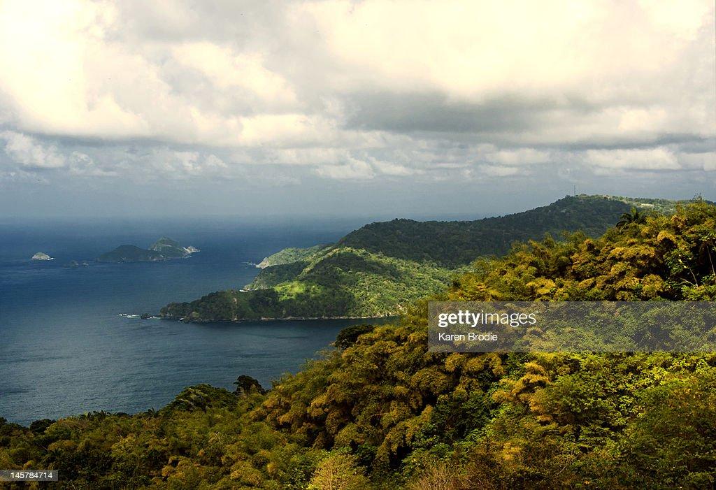 Seascape in Tobago