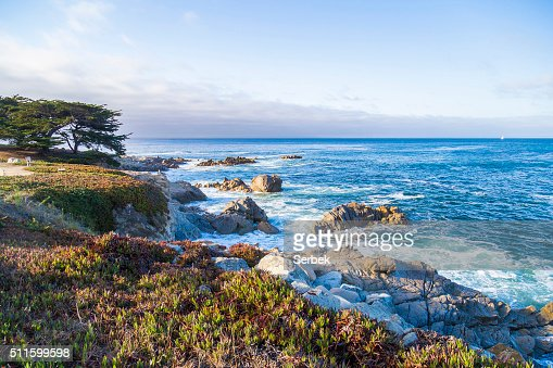Seascape of Monterey Bay and cypress trees at Sunset, California : Stock Photo